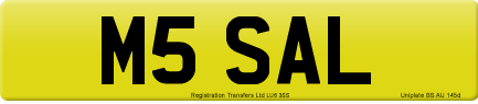 M5 SAL private number plate